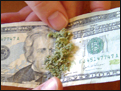 Rolling a joint with a dollar bill.